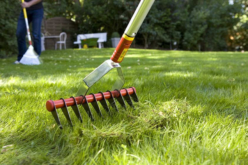 scarificateur outils wolf jardin pelouse