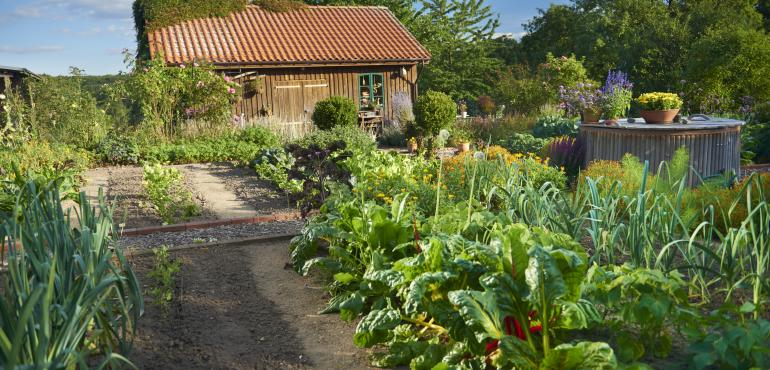 ferme-potager-outils-wolf